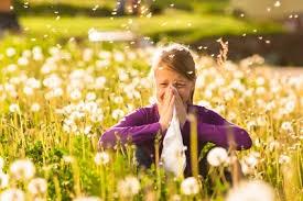 allergies4-1